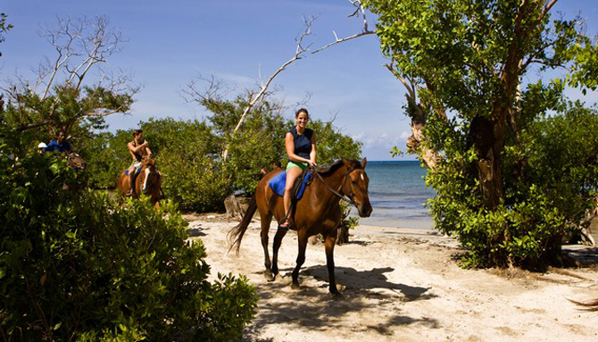 Horse Riding Main Entrance in Montego Bay, Jamaica